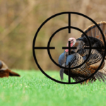 Which Shotgun Choke is Best For Hunting A Large, Slow Bird, Such As A Turkey?