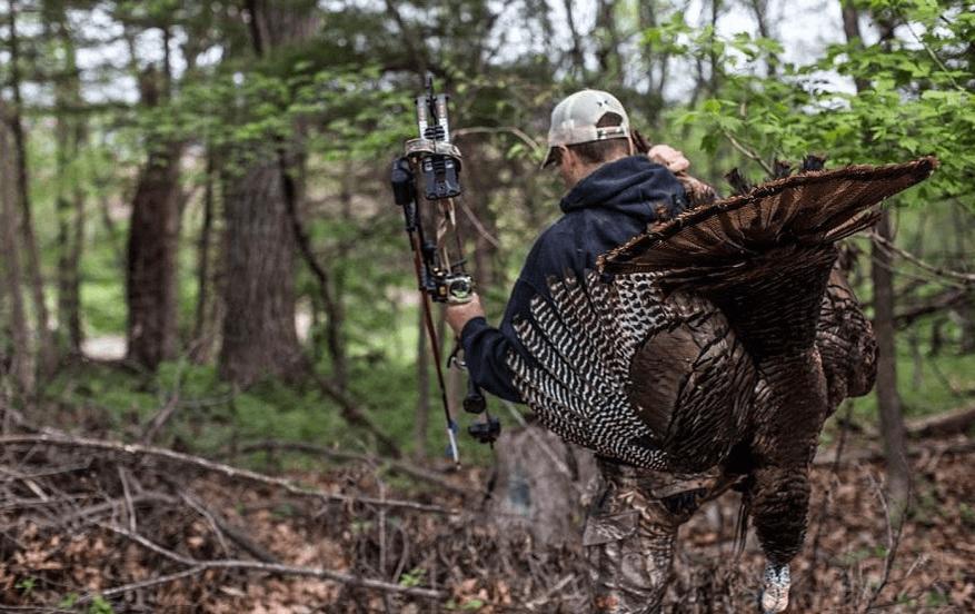 Best Time to Hunt Turkey