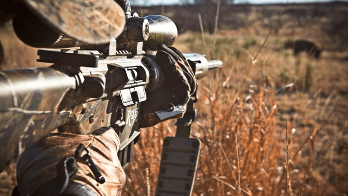 Best Scopes for AR 15 Coyote Hunting